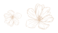飾り画像 花